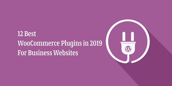 12-Best-WooCommerce-Plugins-in-2019-For-Business-Websites